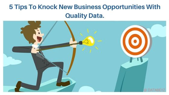 5 Tips To Knock New Business Opportunities With Quality Data