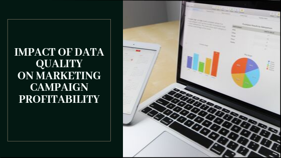 Impact of Data Quality on Marketing Campaign Profitability